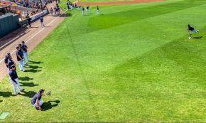 5 Tips Merawat Rumput Sintetis dengan Mudah